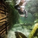 BENJAMIN KROHN LURZ 2 150x150 Unterwasser Thomas Lurz s.Oliver