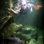 BENJAMIN KROHN LURZ 3 150x150 Unterwasser Thomas Lurz s.Oliver