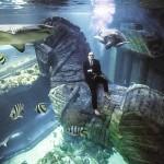 BENJAMIN KROHN LURZ 7 150x150 Unterwasser Thomas Lurz s.Oliver